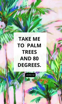 Palm Trees and 80 Degrees Lock Screen2.jpg